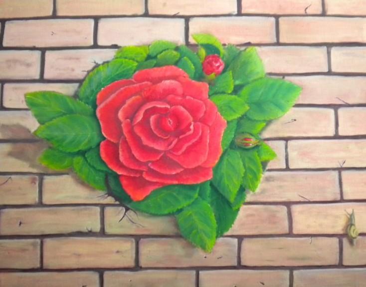 Rose DSCN2917-800x600