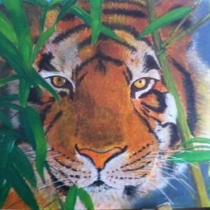 Tigre tigre-rebecca-300x300